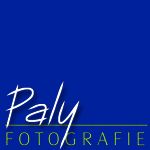 Paly | Fotografie